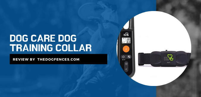 Dog Care Dog Training Collar