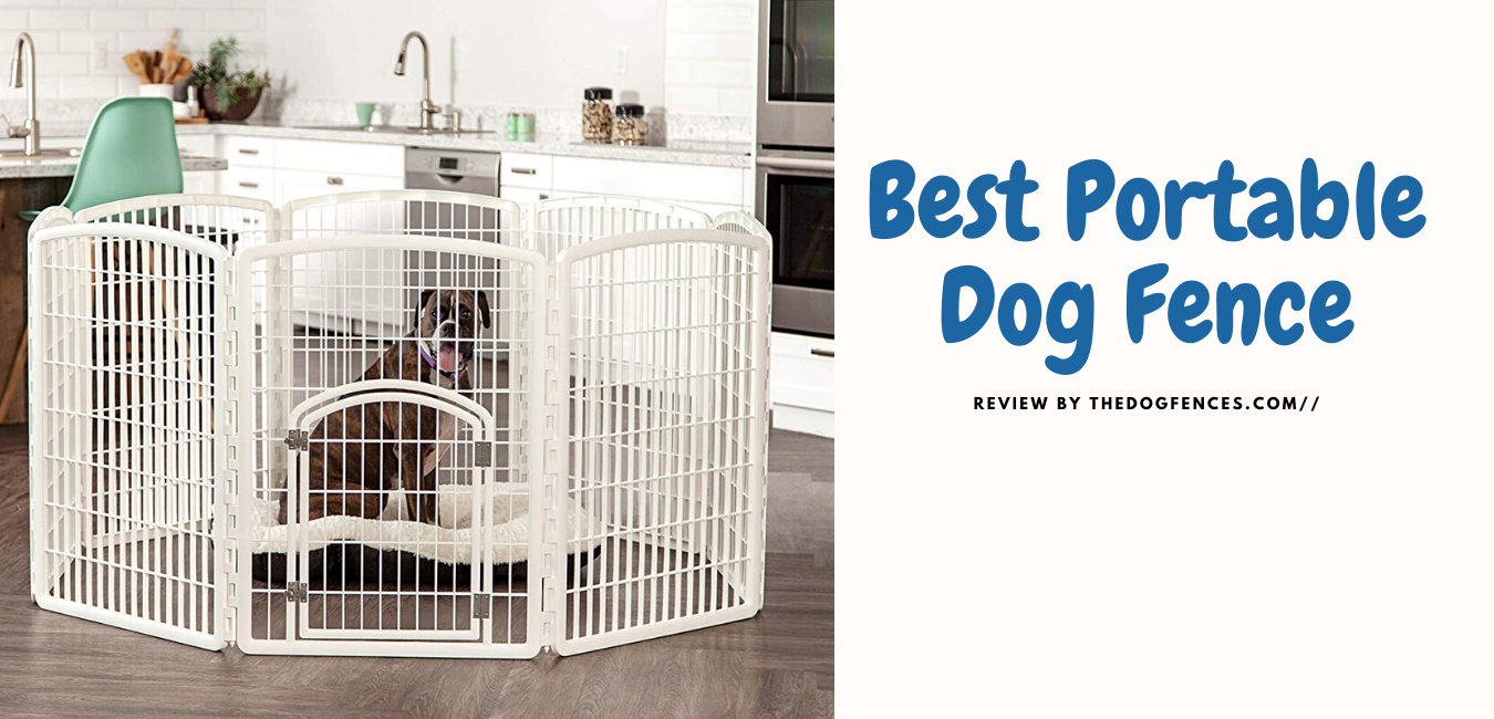 best portable dog fence for rv
